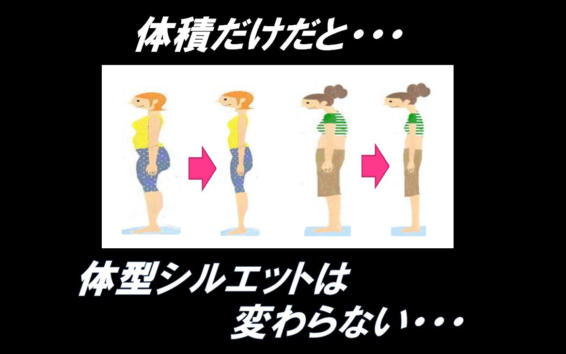 体積だけだと、体型シルエットの変化はない・・